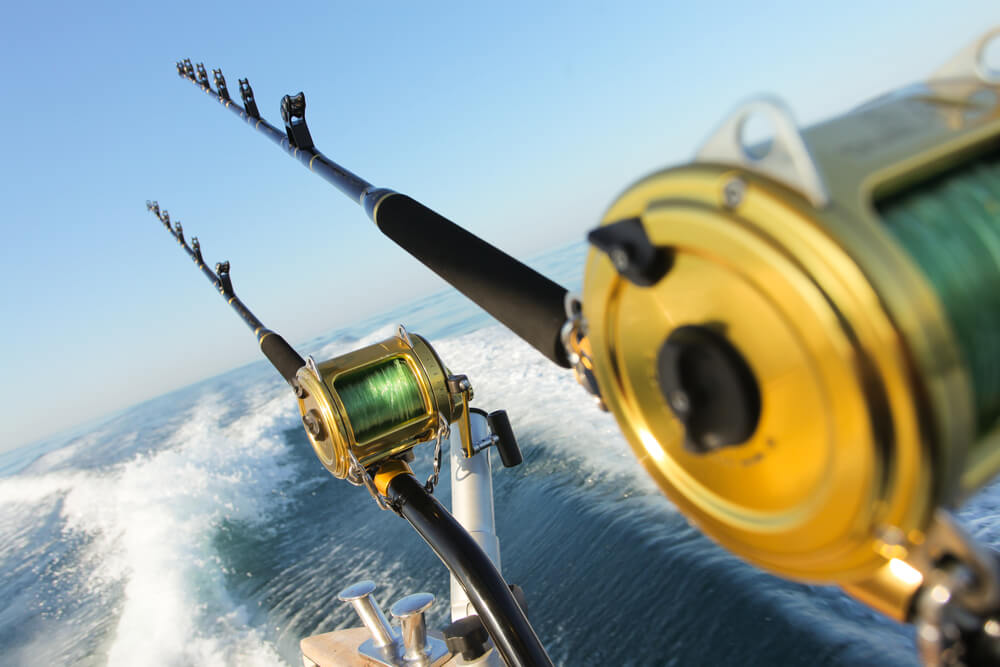 excursions bateau iles canaries