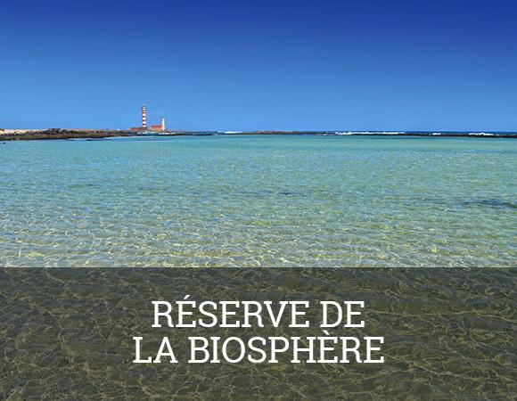 Fuerteventura a été nommée par l'UNESCO Réserve de la Biosphère en mai 2009.