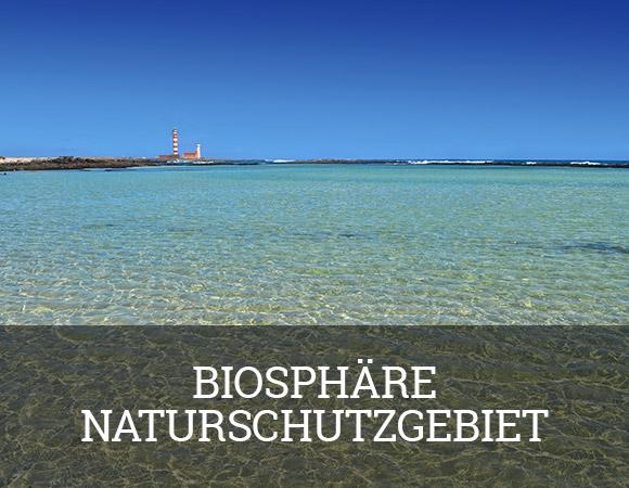 Im Mai 2009 wurde Fuerteventura von der UNESCO zum Biosphäre Naturschutzgebiet ernannt.