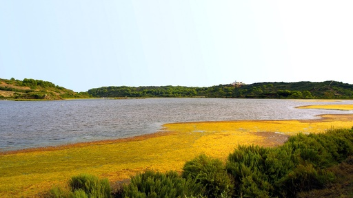 Flora and fauna | Menorca | Garden Hotels